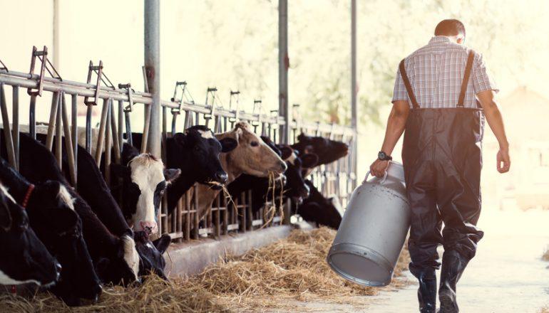 GeneControl – ein Unternehmen bayerischer Tierzuchteinrichtungen